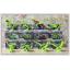 เลโก้จีน YG.77010 ชุด Jurassic World เรืองแสง thumbnail 2