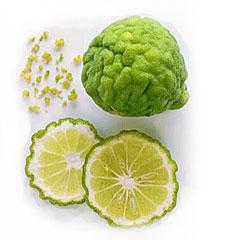 น้ำหมักชีวภาพมะกรูด 100% ใช้หมักผม แก้คัน แช่ล้างสารเคมีในผักผลไม้ ผสมสมุนไพรขัดหน้าหรือผิวกาย