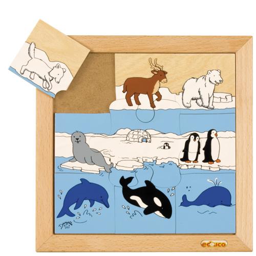 POLAR ANIMAL PUZZLES - ภาพต่อสัตว์ขั้วโลก
