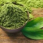 ชาเขียว (Green Tea)