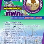 แนวข้อสอบพนักงานพัสดุ กฟภ. การไฟฟ้าส่วนภูมิภาค
