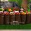 ตะกร้าวางผลไม้ ตะกร้าหวายวางโชว์ผลไม้ ถาดวางผลไม้ thumbnail 1