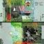 ธนบัตรประเทศ KUWAIT 1/2 (0,5) DINAR ปี พ.ศ. 2557 หรือปี 2014 UNC NEW thumbnail 1