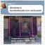 Coopster แทรมโพลีน 10ฟุต(3.05ม) สีชมพู thumbnail 4