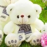 ตุ๊กตาหมีซีเค CK รุ่น BP050111 ขนาด 0.40 เมตร