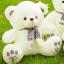 ตุ๊กตาหมีซีเค CK รุ่น BP050112 ขนาด 0.50 เมตร thumbnail 1