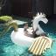 แพยางเป่าลม ม้าบินเพกาซัส Giant Pegasus Inflatable thumbnail 5