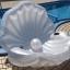 แพยางแฟนซี หอยมุก Seashell pool float thumbnail 2